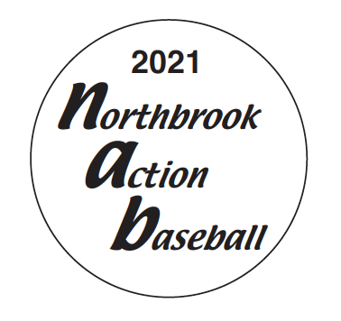 Northbrook Action Baseball